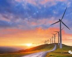 上半年电力、煤、油、气、核、可再生数据
